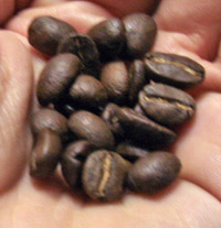 el paraiso beans da Matteo   el Paraiso Bolivia